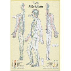 Méridiens Chronobioenergetica